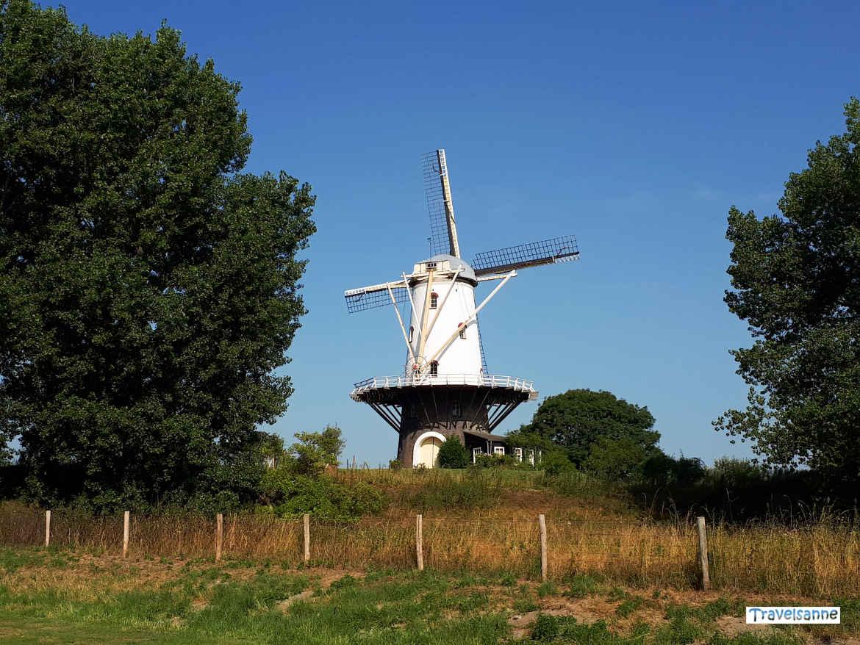 Blogparade Zeeland: Die Windmühle von Veere