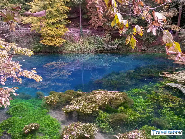 Buntes Herbstlaub kontrastiert mit dem Blau der Karstquelle