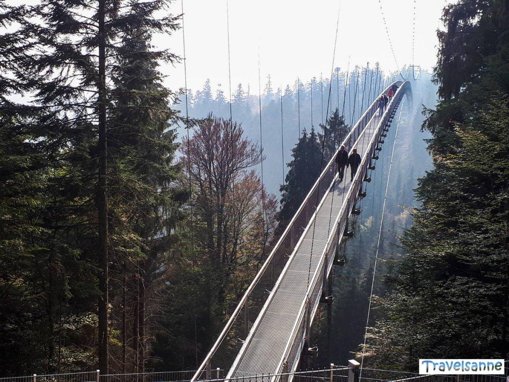 Die neue Hängebrücke Wildline in Bad Wildbad
