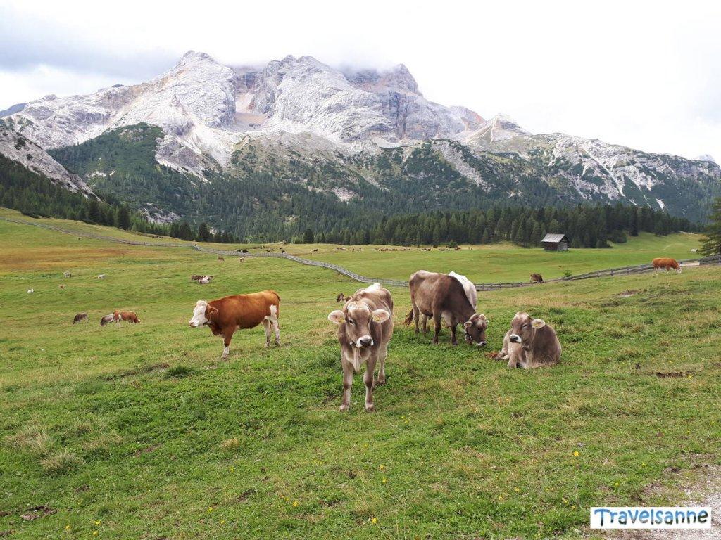 Wanderung zur Plätzwiese in den Dolomiten