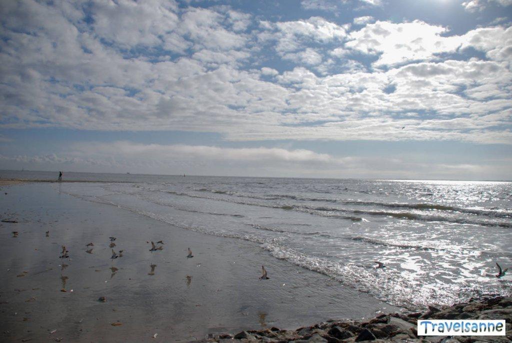 Wind und Wellen genießen auf der Nordseeinsel Norderney