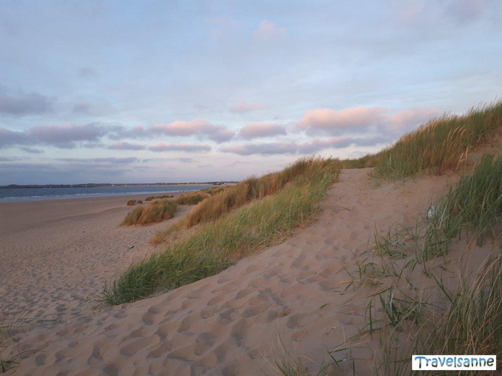 Magische blaue Stunde am Strand von Renesse in Zeeland