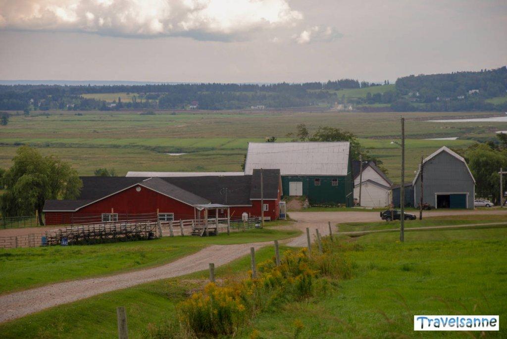 Ein Traum für Pferdeliebhaber: Die Broadleaf Guest Ranch in New Brunswick