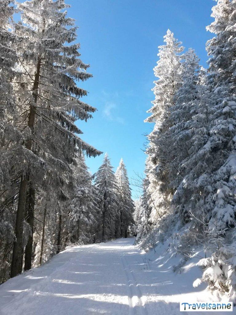 Wunderschöne Winterwanderung vom Skilift Seibelseckle zum Mummelsee