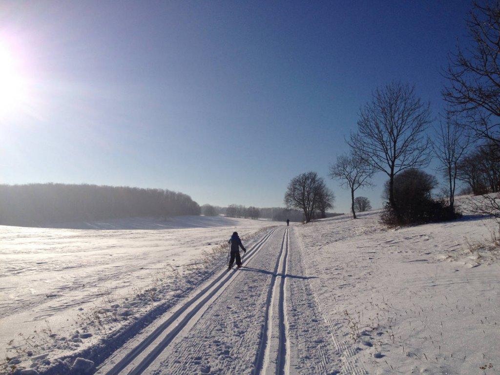 Skiurlaub mit Kindern: Auf der Schwaben-Loipe in Sonnenbühl
