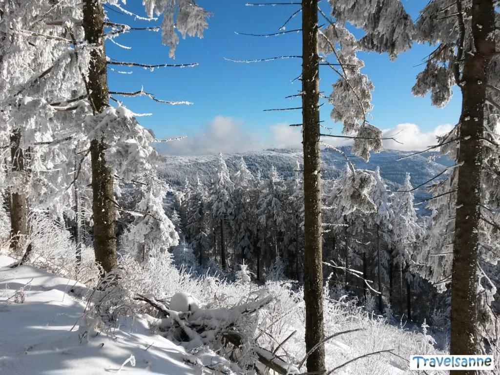 Traumhafte Winterwanderung zur Hornisgrinde im Schwarzwald