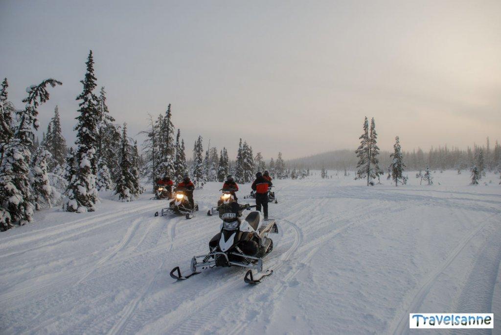 Mit dem Schneemobil durch die Wälder Lapplands