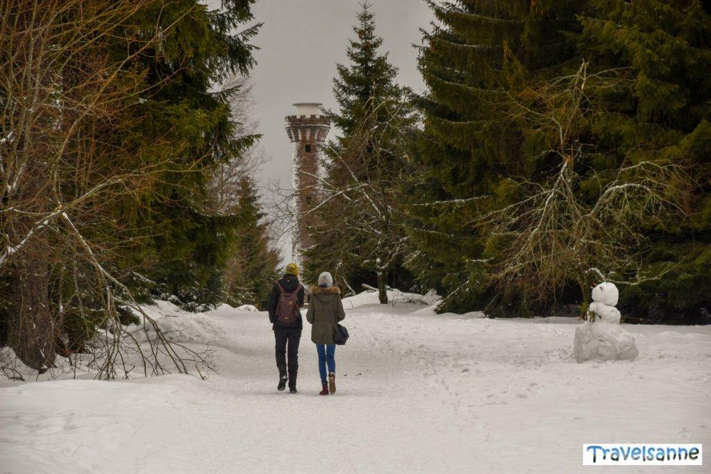 Winterwandern im Schwarzwald am Kaltenbronn