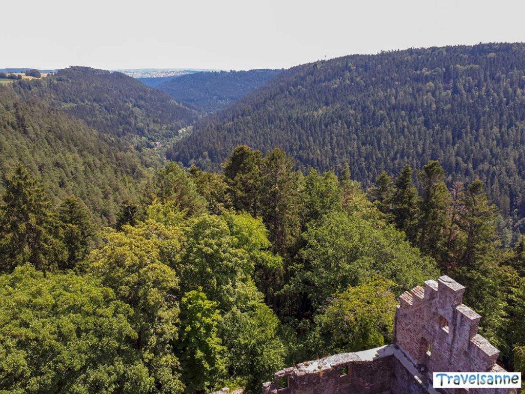 Ausblick über die Gipfel des Nordschwarzwalds