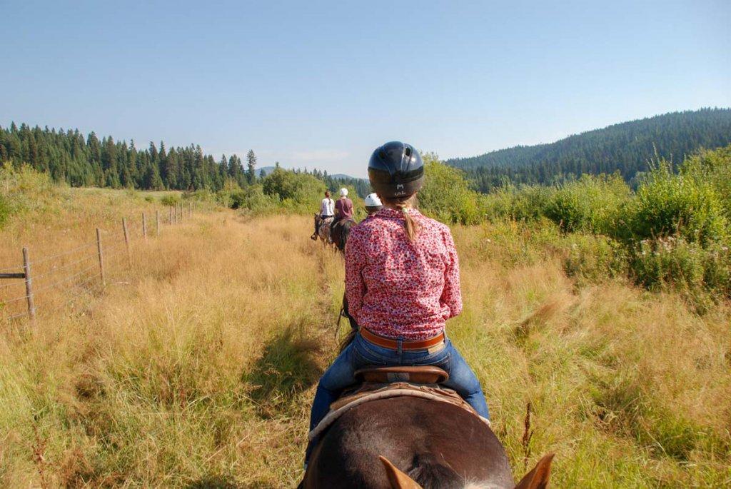 Ausreiten für wenig Geld auf einer Pferderanch in Kanada