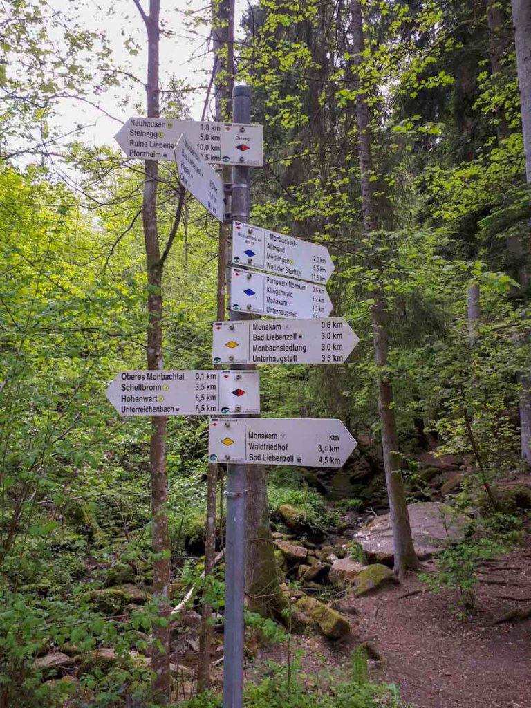Schilderwald auf der Monbachtal Wanderung