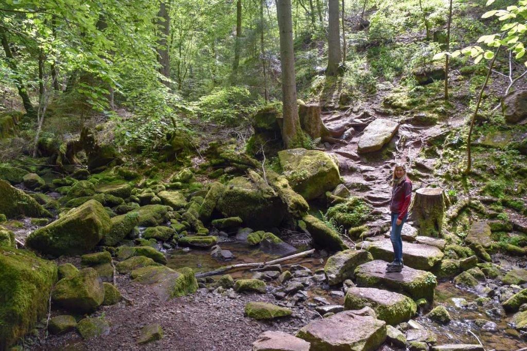 Wandern im Schwarzwald: Durch das romantische Monbachtal