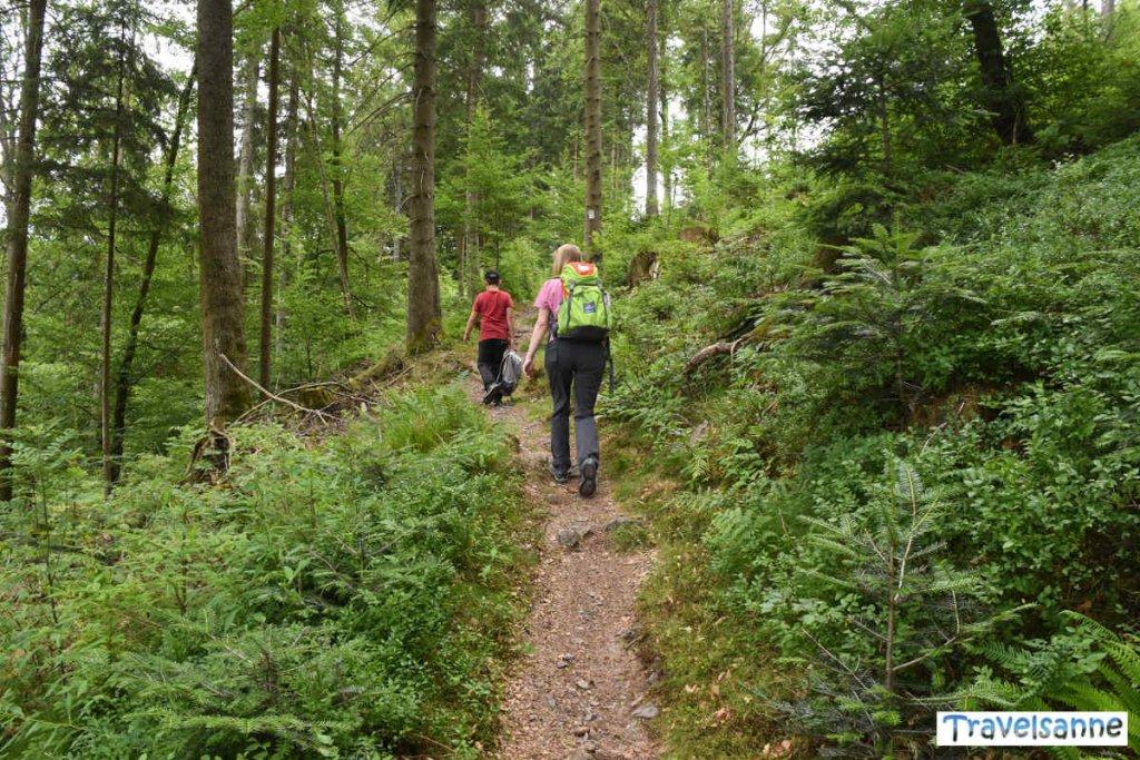 Schweißtreibender Aufstieg zur Ruine Tannenfels