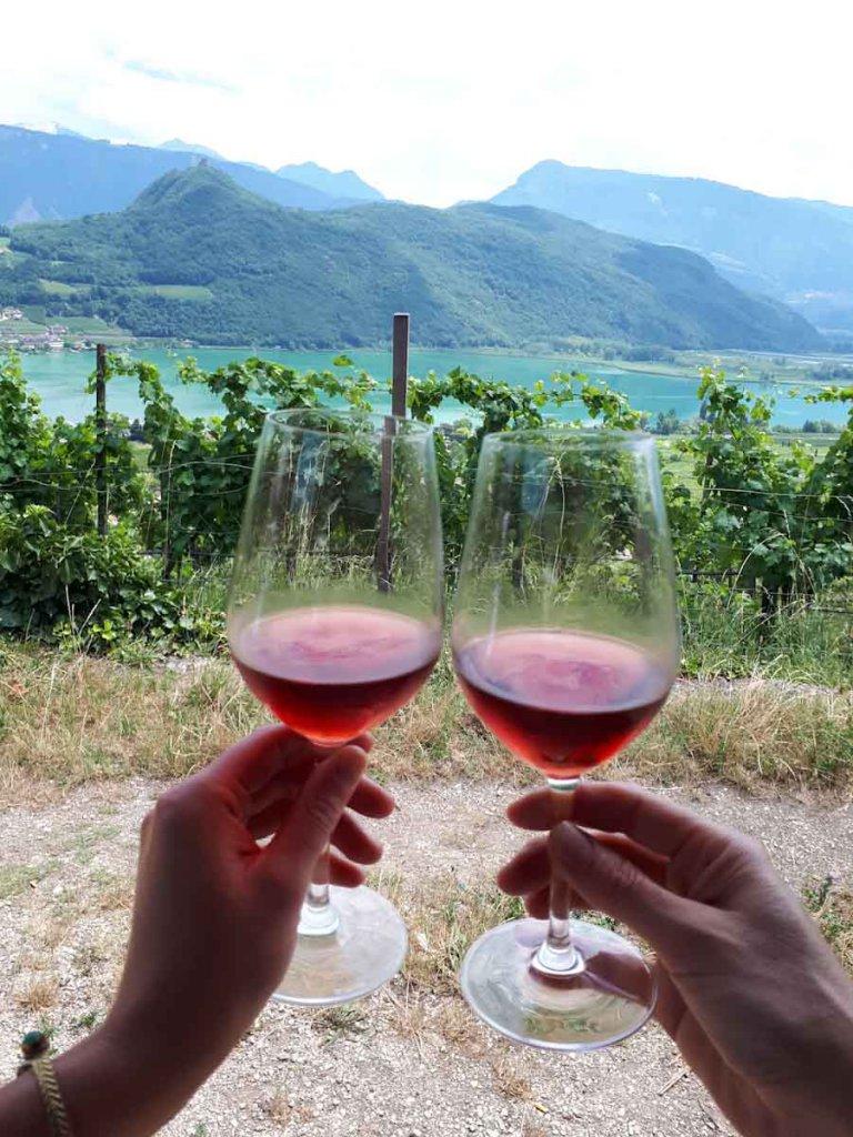 Weinprobe mitten im Südtiroler Weinanbaugebiet über dem Kalterer See