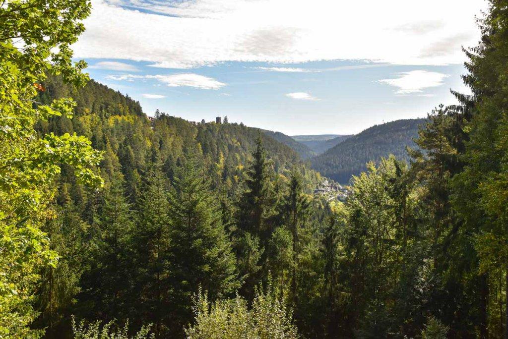 Blick über den Schwarzwald zur Burg Zavelstein