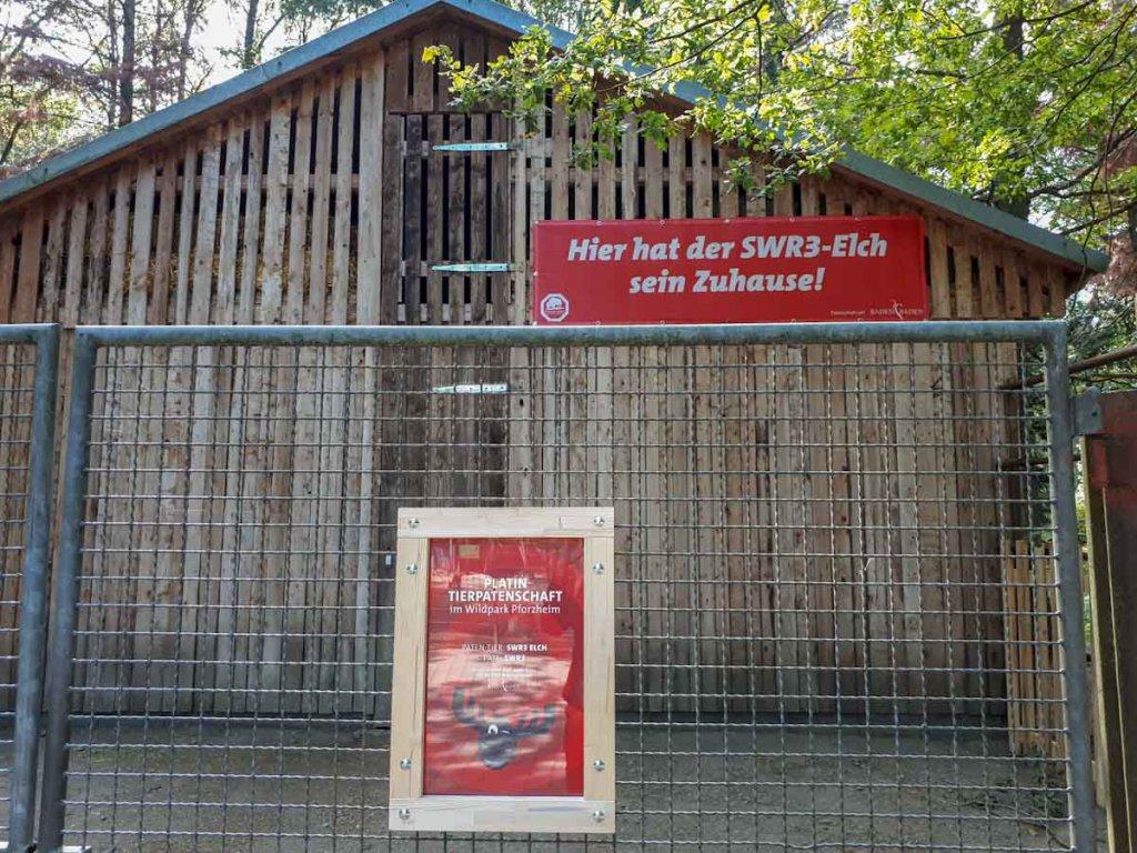 Pforzheim Aktivitäten: Besuch beim SWR3 Elch im Wildpark Pforzheim