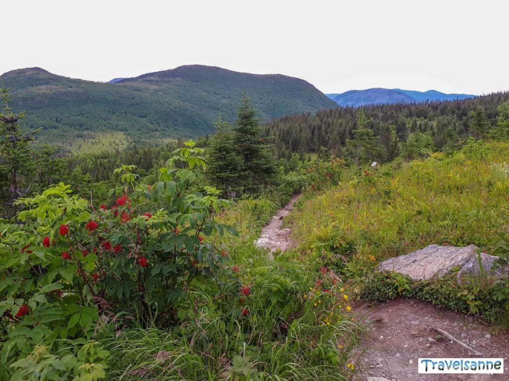 Kanada Reise-Guide: Der Gaspésie Nationalpark in Québec