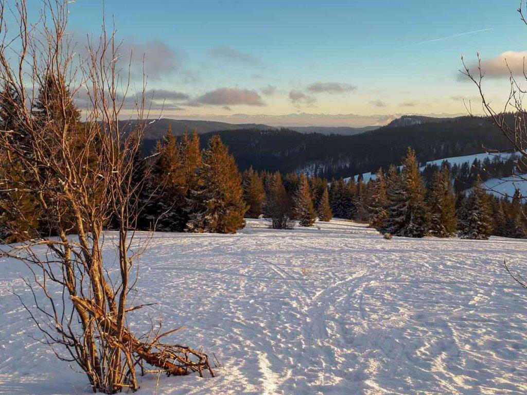 Alpenblick beim winterlichen Ausflug auf den höchsten Berg des Schwarzwalds