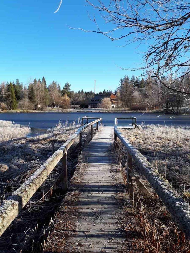 Frostiger Wintermorgen am kleinen Weiher hinter der Waldfunkeln Lodge