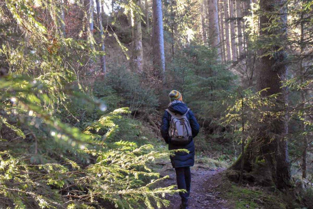 Wandern Schwarzwald: Durch die Ravennaschlucht