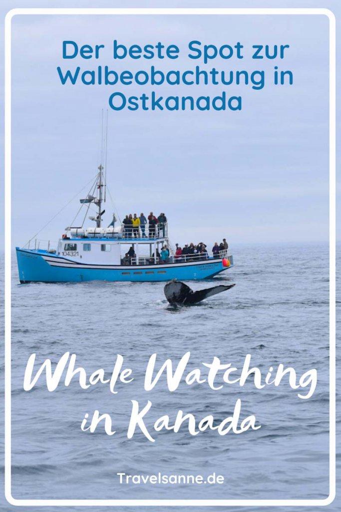 PIN-Whale-Watching-Kanada