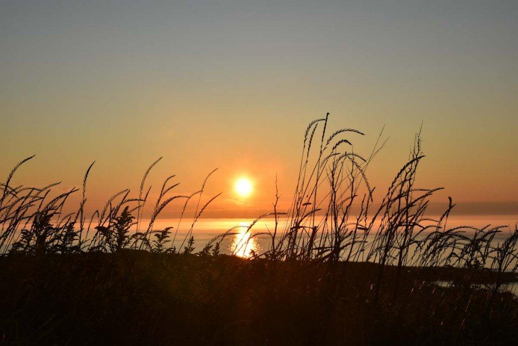 Brier Island: Der beste Spot zum Sonnenuntergang in Nova Scotia