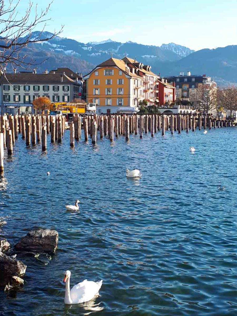 Ein echtes Schmuckstück: das Städtchen Vevey am Genfer See