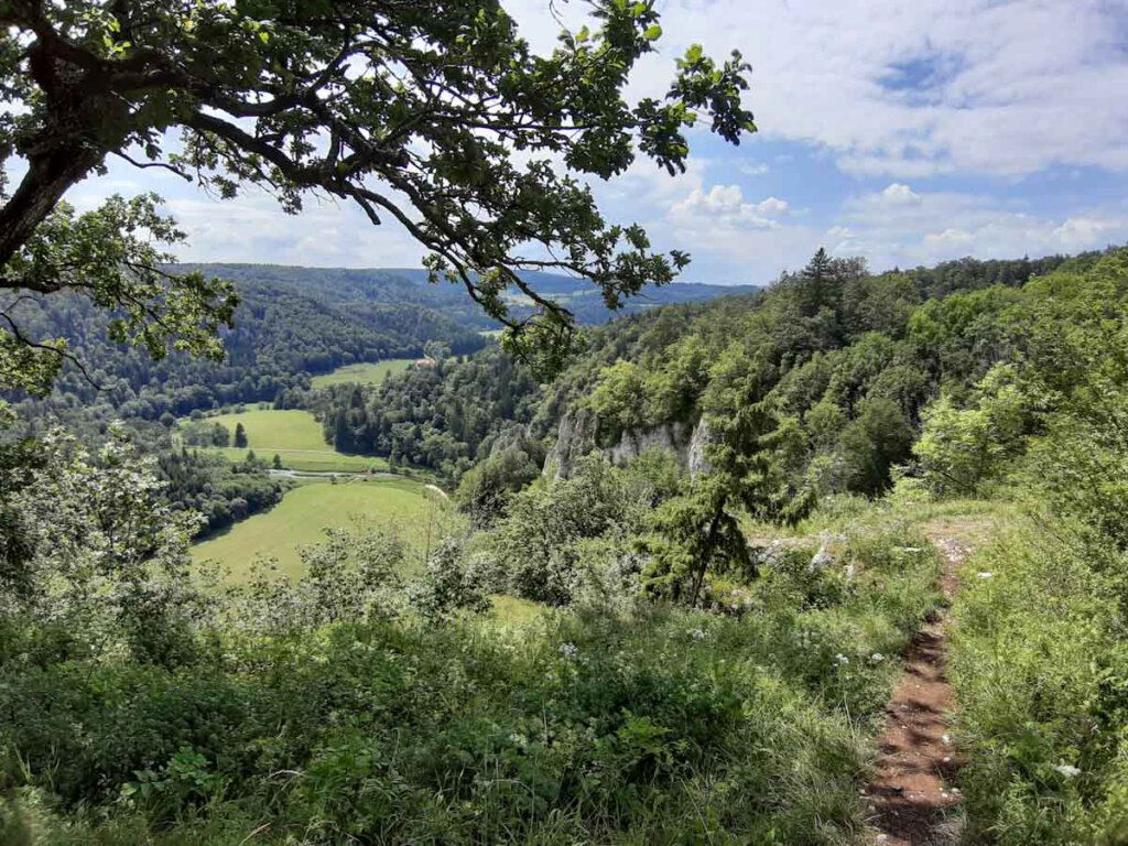 180 Grad Panoramablick auf der Donaufelsen-Tour