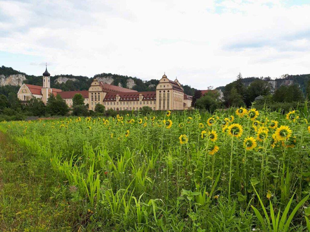 Das idyllisch gelegene Benediktinerkloster Erzabtei St. Martin zu Beuron