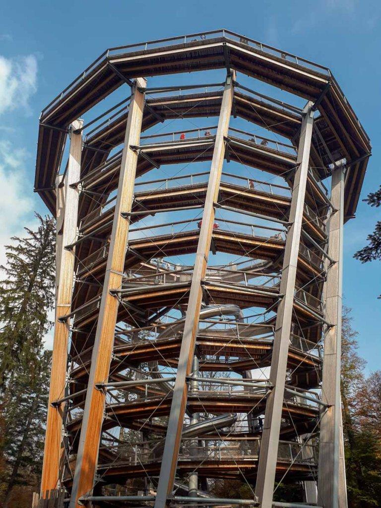 Besuchermagnet: Der Aussichtsturm des Baumwipfelpfads Schwarzwald