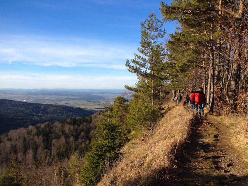Premiumwandern auf dem Traufgang Zollernburg Panorama