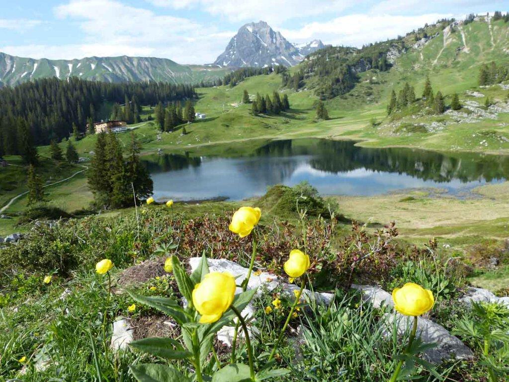 Schönste Reiseziele Europas: Der Körbersee im Bregenzerwald in Österreich