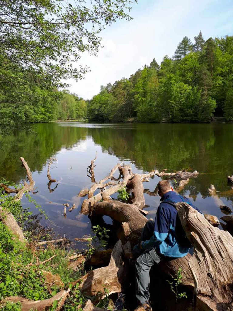 Wanderung um den Bärensee bei Stuttgart