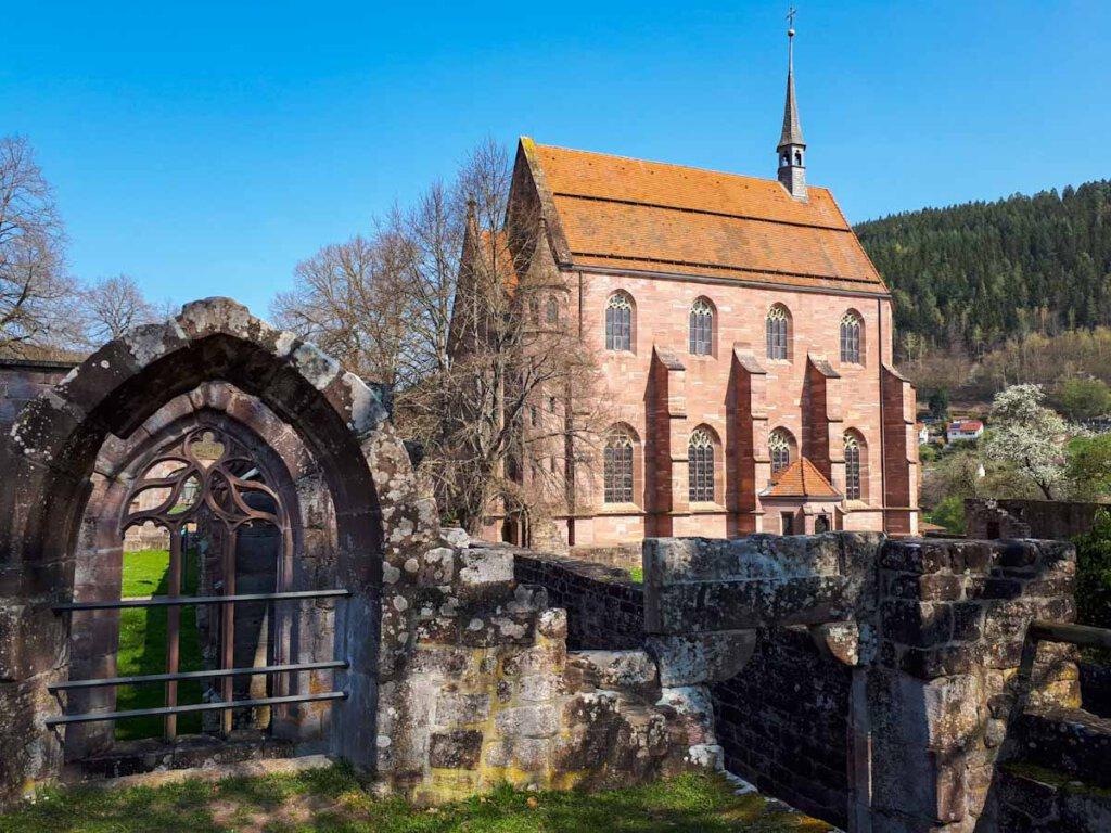 Beliebter Fotospot im Schwarzwald: Die Ruine von Kloster Hirsau