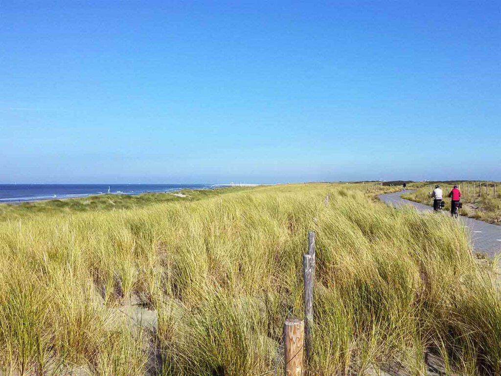 Urlaub in Holland: Radfahren in den Dünen