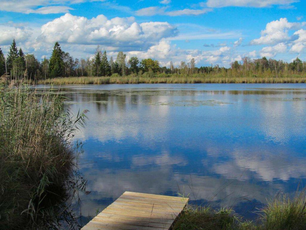 Der Riedsee im Wurzacher Ried im Allgäu