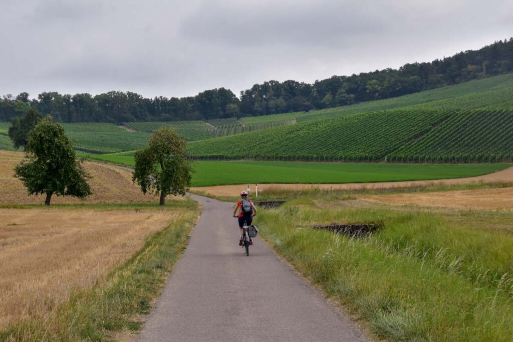 Bergauf und bergab mit dem E-Bike durch die Weinregion Kraichgau