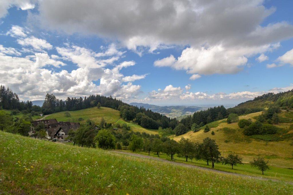 Wandern im Schwarzwald mit grandiosen Ausblicken