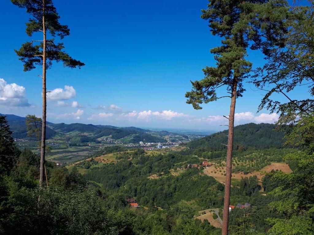 Schwarzwald Panoramablick vom gigantischen Waldsofa