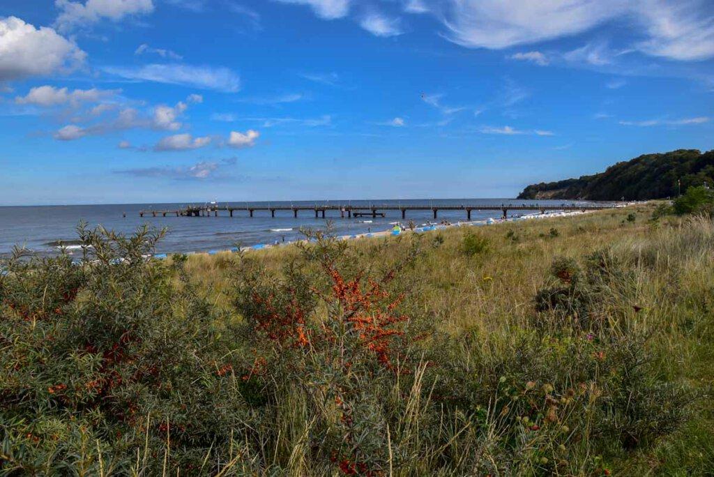 Strand Göhren mit Seebrücke und Sanddornbüschen