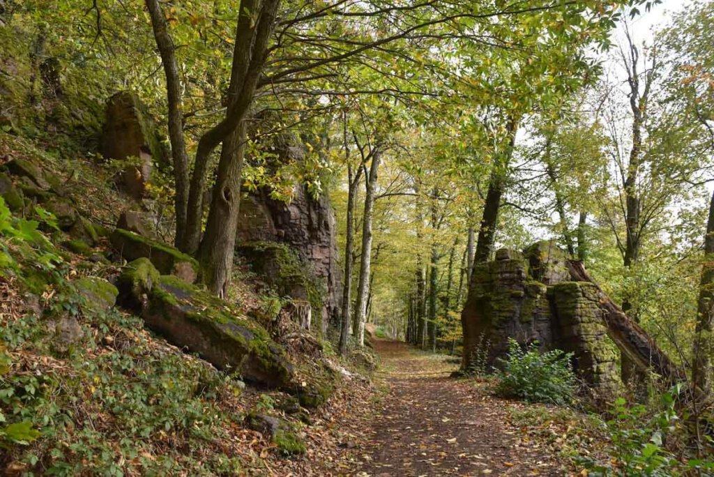 Wandern durch den Zauberwald am Battert