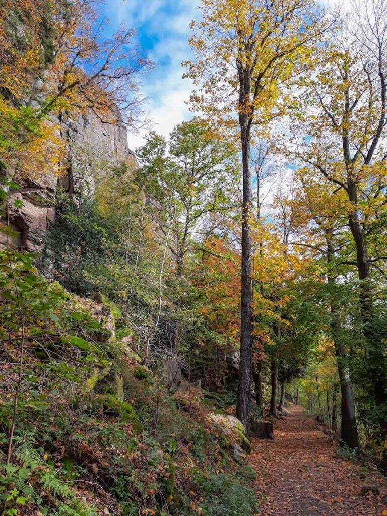 Herbstliches Farbenspiel auf dem Unteren Felsenweg bei den Battertfelsen