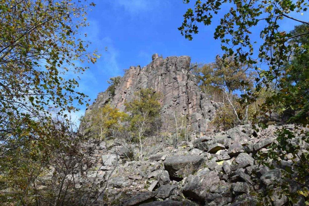 Refugium für seltene Tier- und Pflanzenarten: Die Blockhalde unterhalb des Felsmassivs