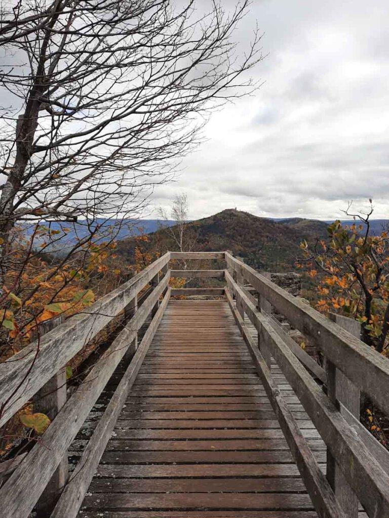 Ausblicke vom Holzsteg an der Felsenbrücke