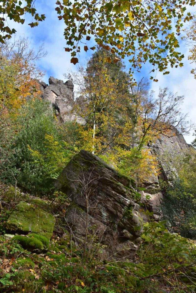 Die roten Felswände der Battertfelsen blitzen durch den Herbstwald