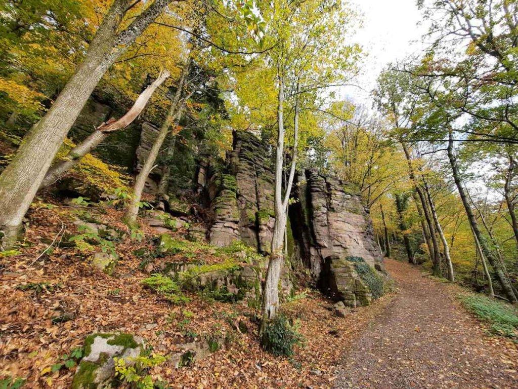 Nordschwarzwald Wanderung rund um die Battertfelsen bei Baden-Baden