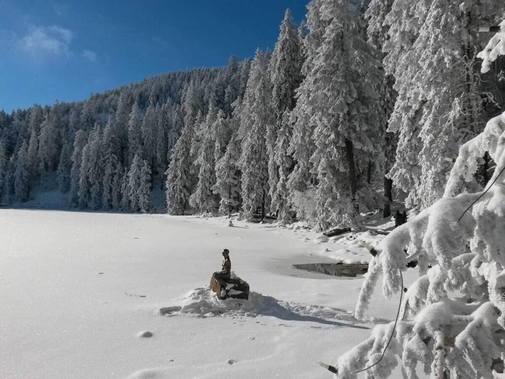 Die Nixe vom Mummelsee in Eis und Schnee