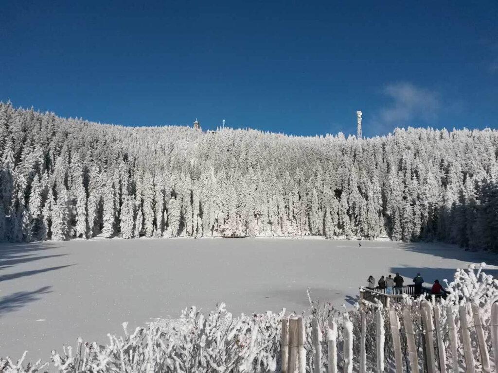 Schwarzwald pur: Winterlicher Spaziergang am Mummelsee