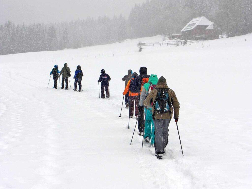 Schneeschuhwandern im Schwarzwald bei Schneetreiben