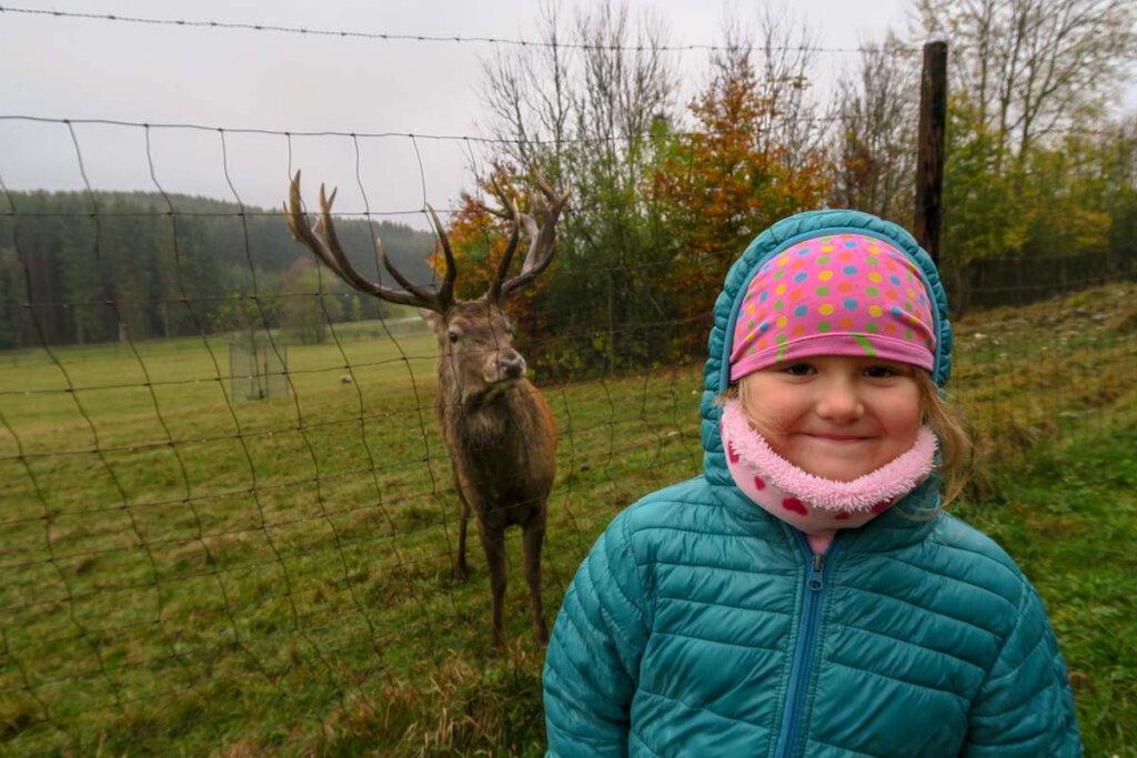 Spaziergang im Winter zum Wildgehege Meßstetten